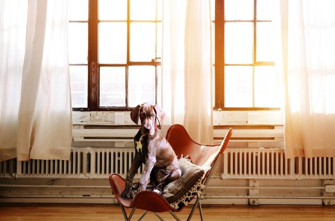 Chaise ergonomique, comment choisir ?