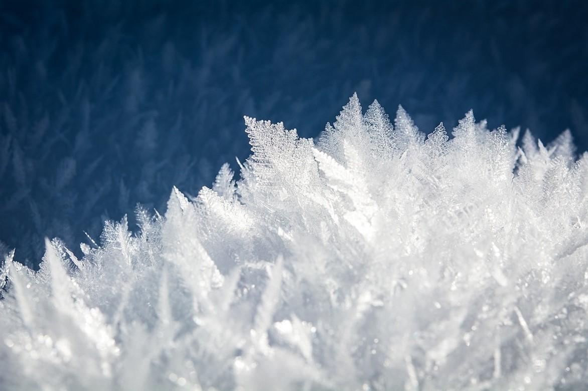 Glacière électrique, les marques à privilégier